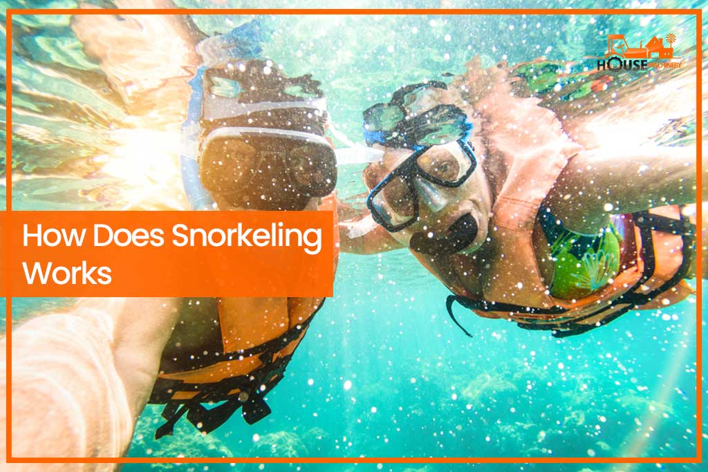 How Does Snorkeling Works